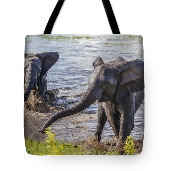 Leaving The River Tote Bag