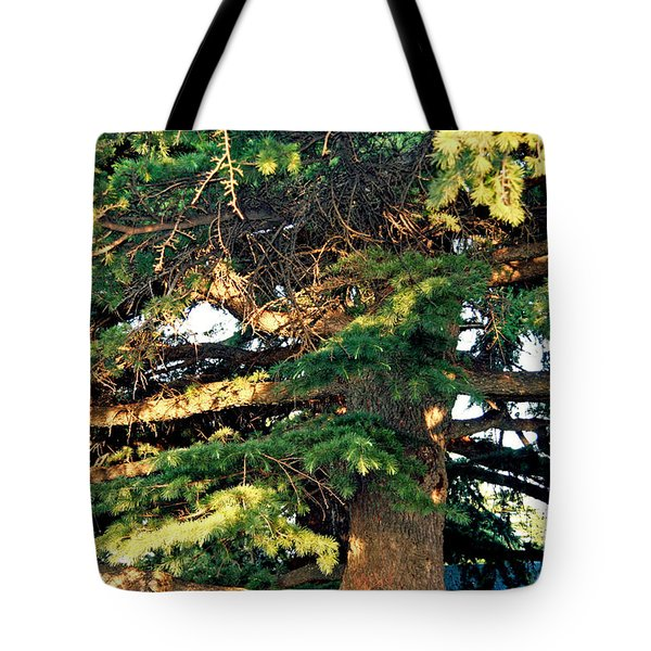 Lebanese Cedar Tote Bag