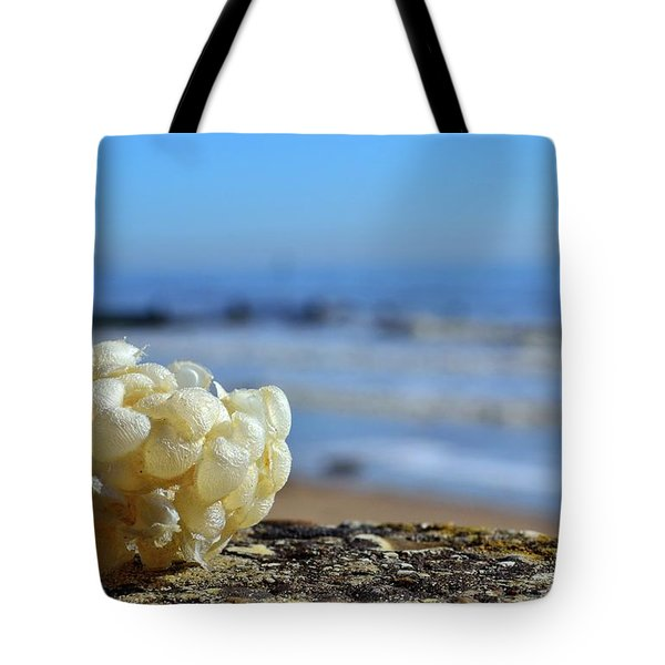 Left By The Tide Tote Bag