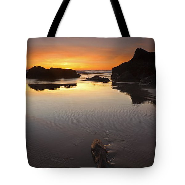 Left By The Tides Tote Bag by Mike  Dawson