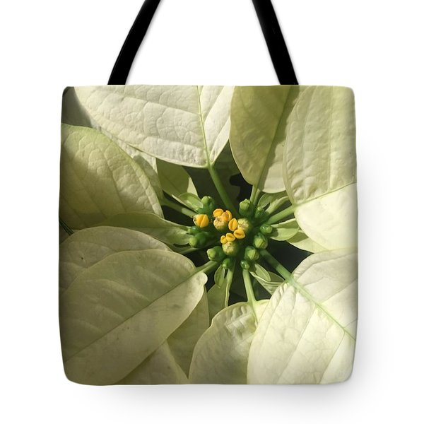 Legend Of The Poinsettia  Tote Bag