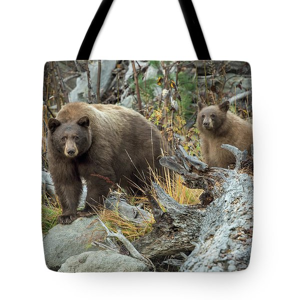 Legends Of The Fall Tote Bag