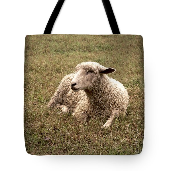 Leicester Sheep In The Dewy Grass Tote Bag