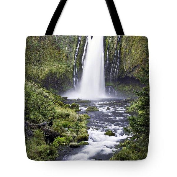 Lemolo Falls Tote Bag