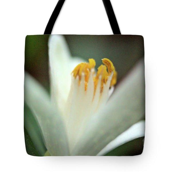 Lemon Flower 2018 Tote Bag