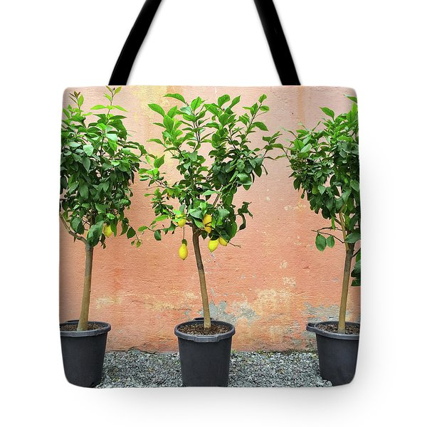 Lemon Trees With Ripe Fruits Tote Bag