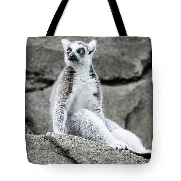 Lemur The Cutie Tote Bag