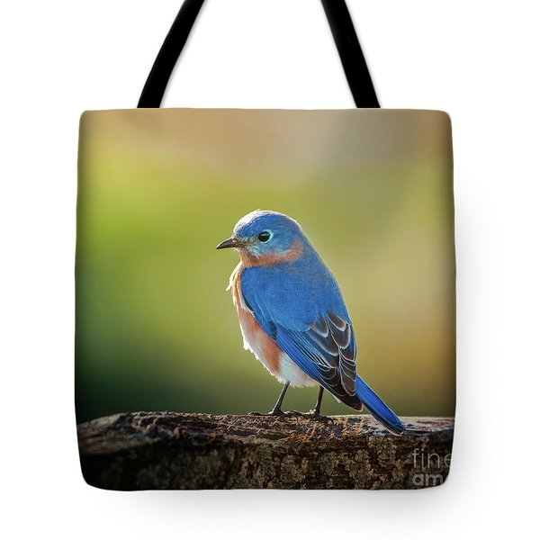 Lenore's Bluebird Tote Bag by Robert Frederick