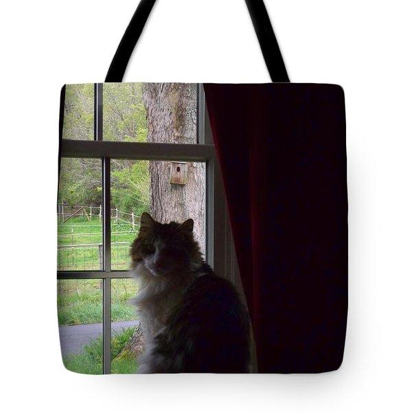 Leo In The Window Tote Bag