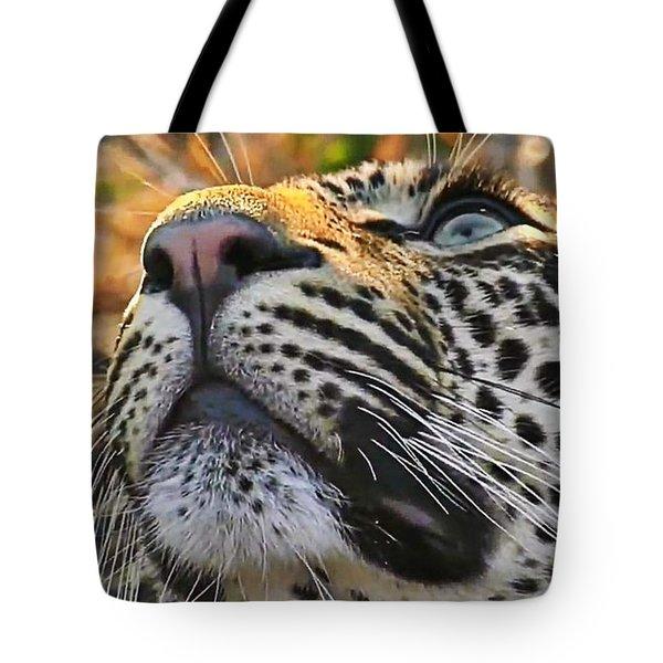 Leopard Aloft Tote Bag
