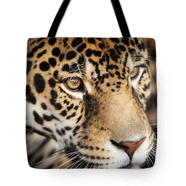 Leopard Face Tote Bag