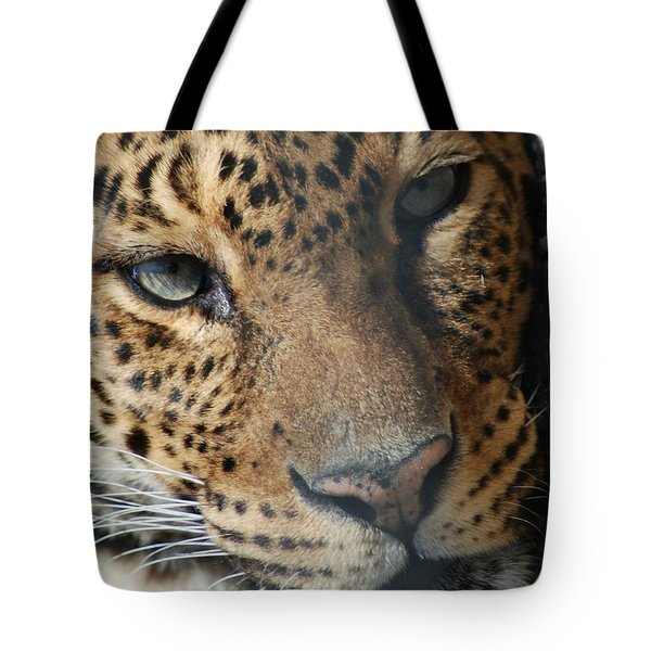 Tote Bag featuring the photograph Leopard Face by Richard Bryce and Family