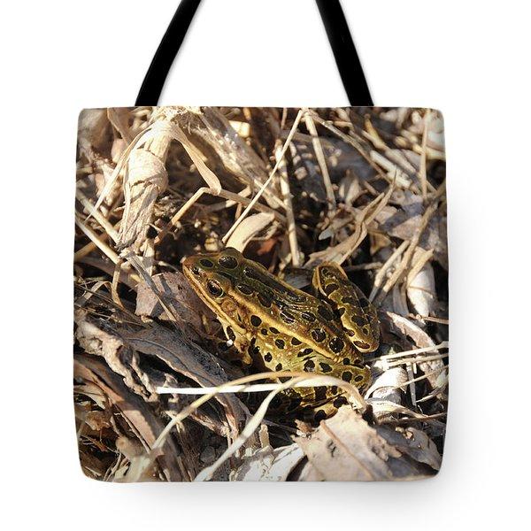 Leopard Frog Tote Bag by Lana Raffensperger