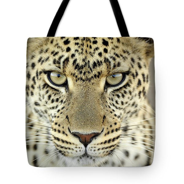 Leopard Panthera Pardus Female Tote Bag by Martin Van Lokven
