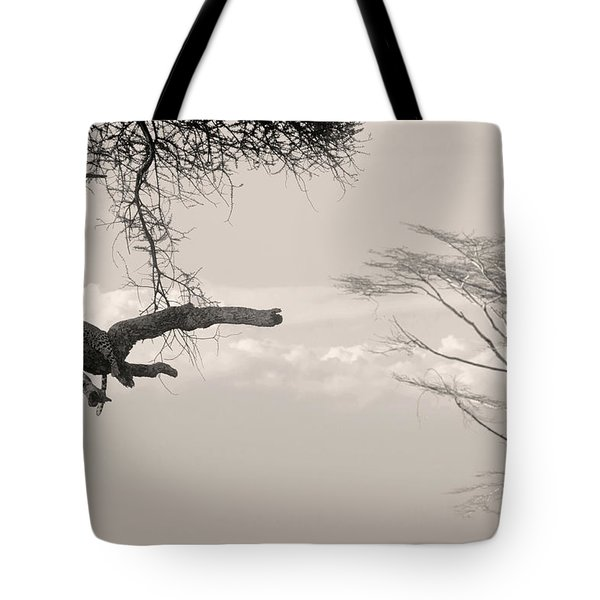 Leopard Resting On A Tree Tote Bag