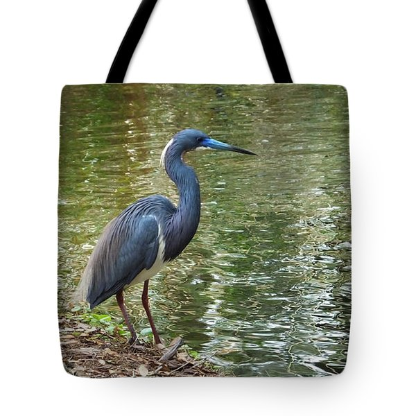Lesser Blue Heron In Mating Plumage Tote Bag by Judy Wanamaker