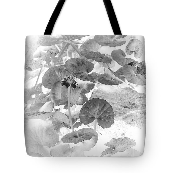 Lesser Celandine Buttercup Flower In Black And White Tote Bag