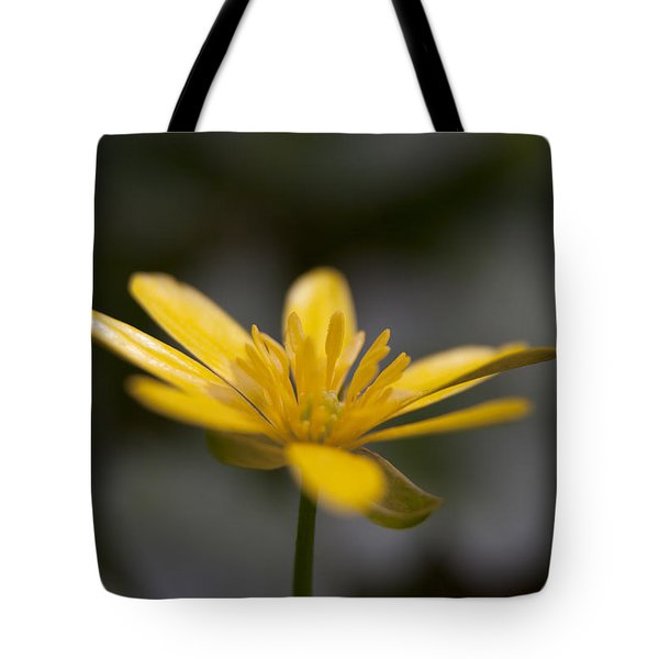 Tote Bag featuring the photograph Lesser Celandine by Karen Van Der Zijden