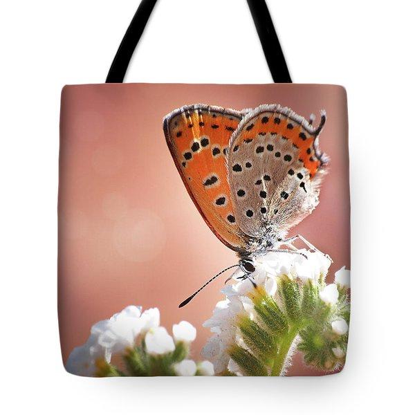 Lesser Fiery Copper Tote Bag