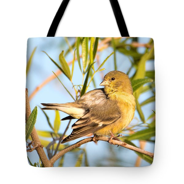 Tote Bag featuring the photograph Lesser Goldfinch by Dan McManus