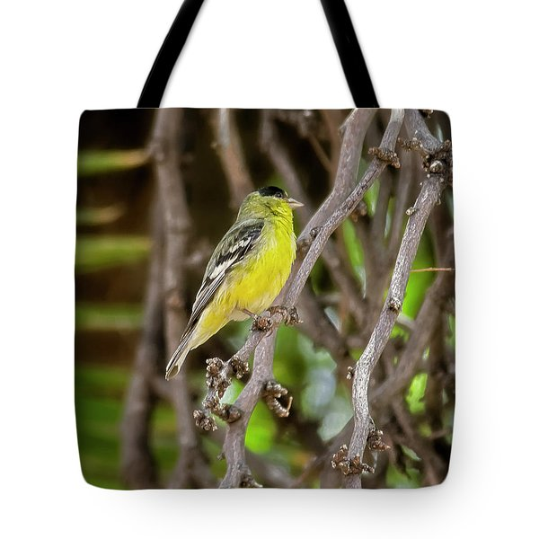 Tote Bag featuring the photograph Lesser Goldfinch H57 by Mark Myhaver