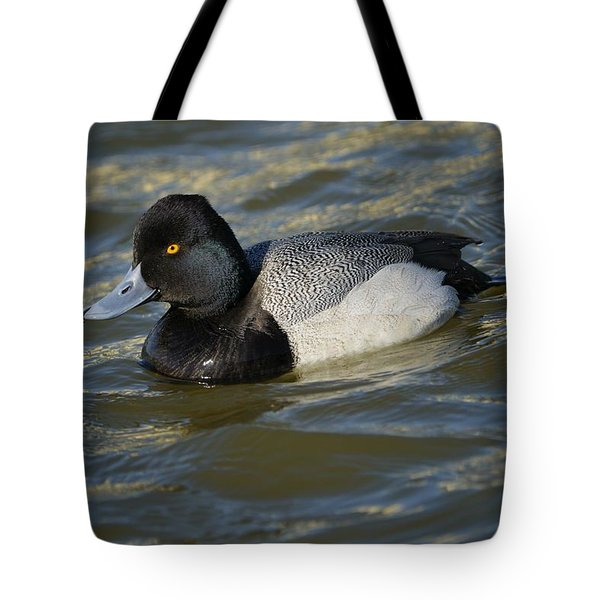 Tote Bag featuring the photograph Lesser Scaup Drake by Bradford Martin