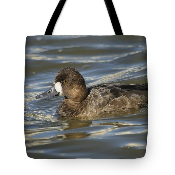 Tote Bag featuring the photograph Lesser Scaup Hen by Bradford Martin