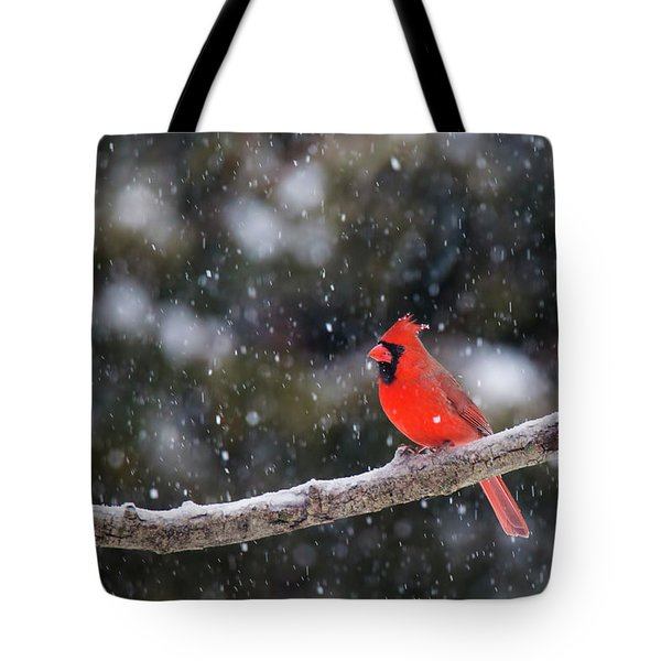 Tote Bag featuring the photograph Let It Snow by Mircea Costina Photography
