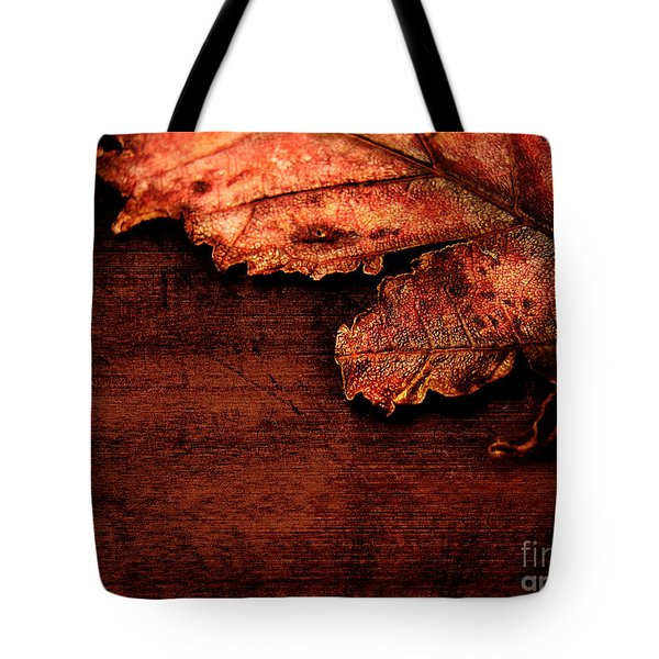 Let Me Hold You...  Tote Bag