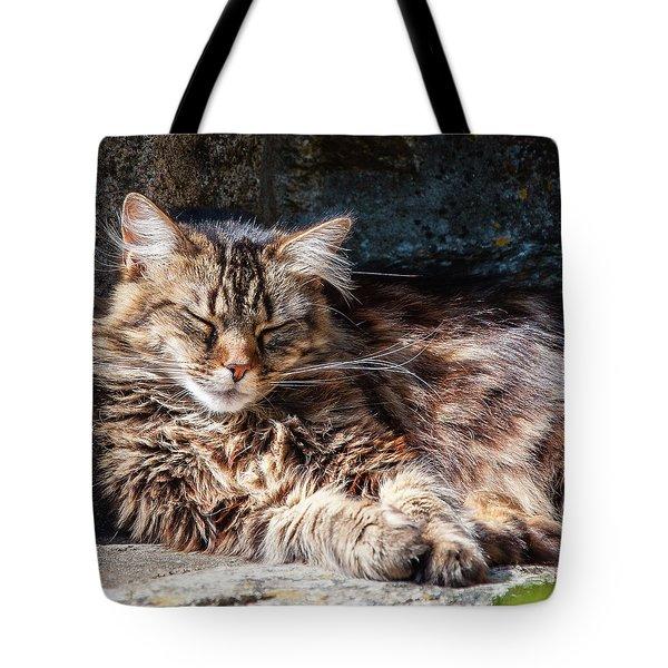 Let Me Sleep... Tote Bag
