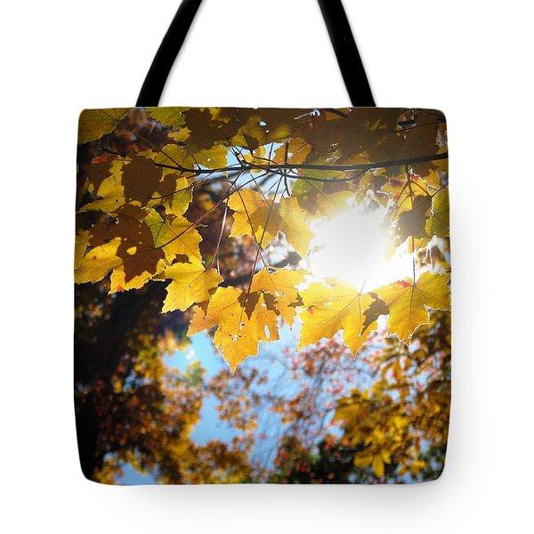Let The Sun Shine In Tote Bag by Angela Davies
