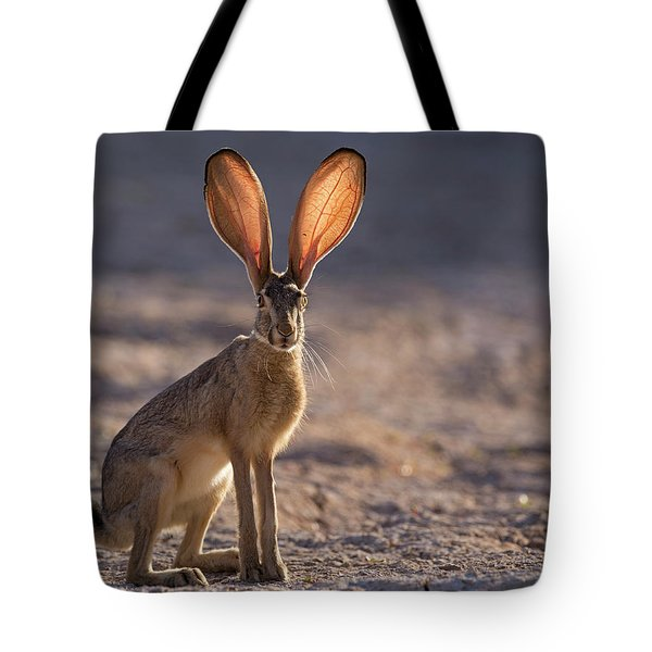 Let The Sun Shine Through Tote Bag by Sue Cullumber