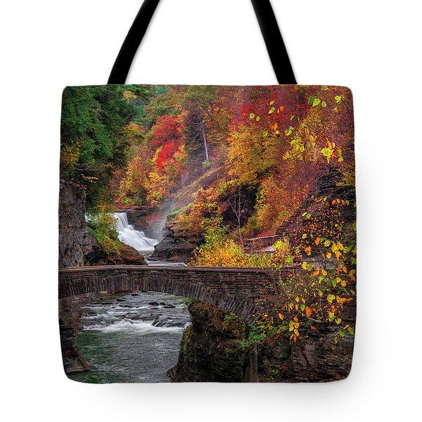 Letchworth Lower Falls Tote Bag