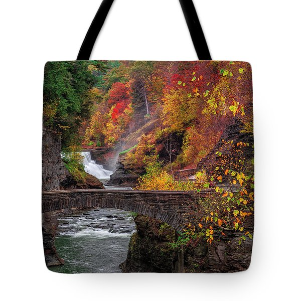 Letchworth Lower Falls Tote Bag by Mark Papke