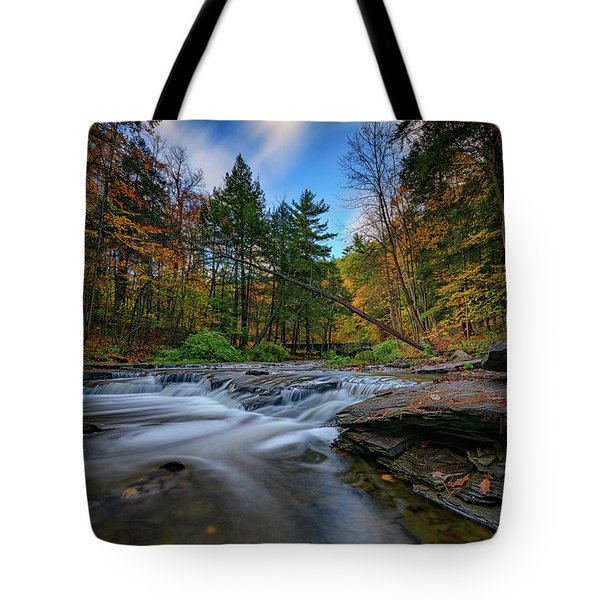 Letchworth's Wolf Creek  Tote Bag
