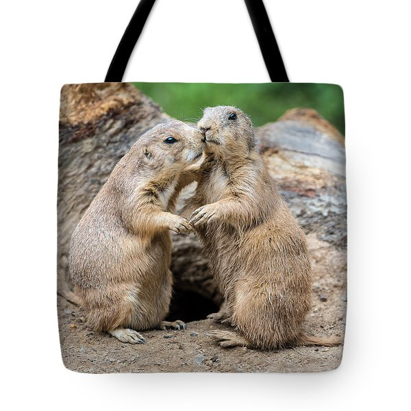 Let's Fall In Love Tote Bag