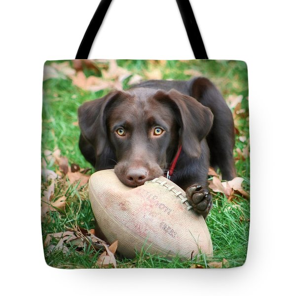 Let's Play Football Tote Bag by Lori Deiter