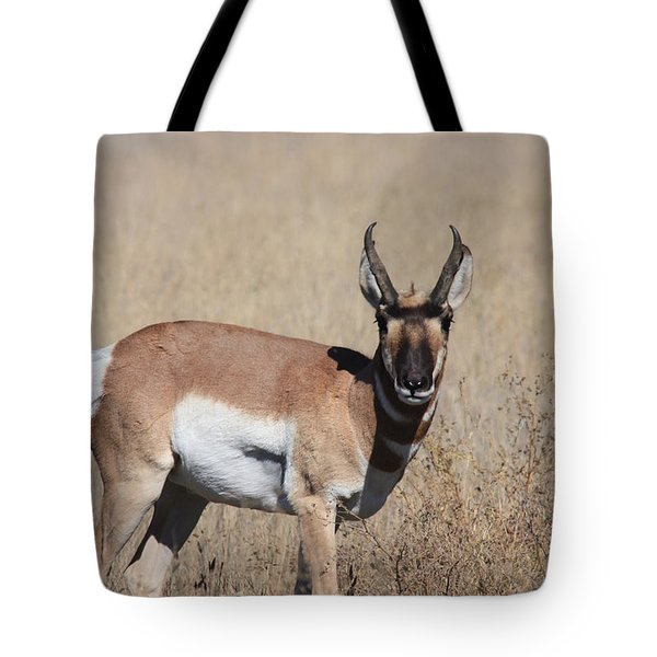 Let's Rumble Tote Bag