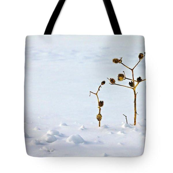 Let's Stick Together Tote Bag by Evelina Kremsdorf
