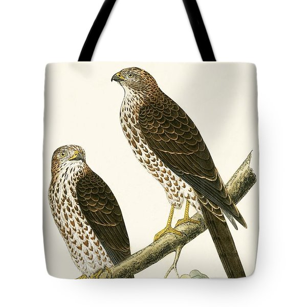 Levant Sparrow Hawk Tote Bag by English School