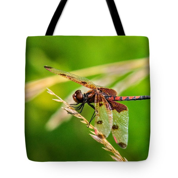 Libelluid Resting On Grass Tote Bag