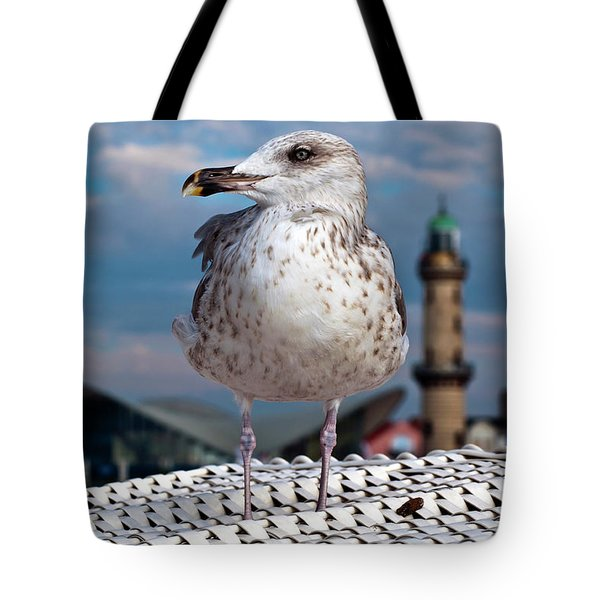 Tote Bag featuring the photograph Liberty Of An Pacific Gull by Silva Wischeropp