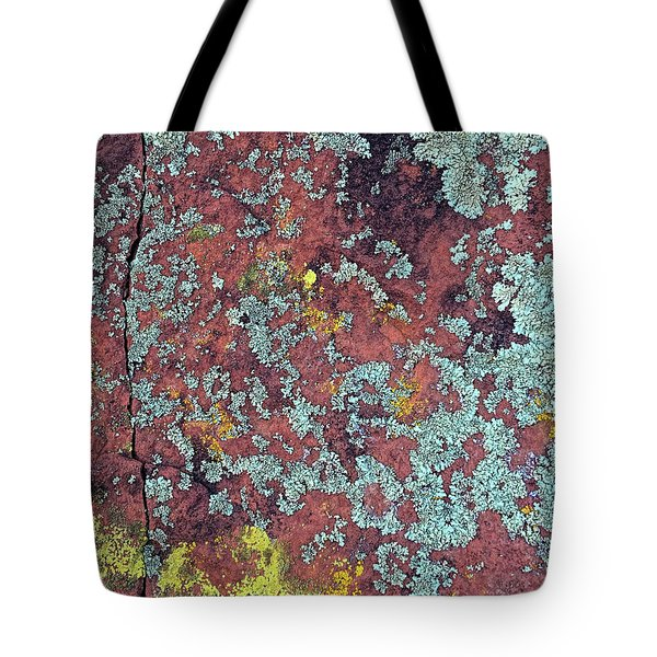 Lichen Colors Tote Bag by Todd Breitling