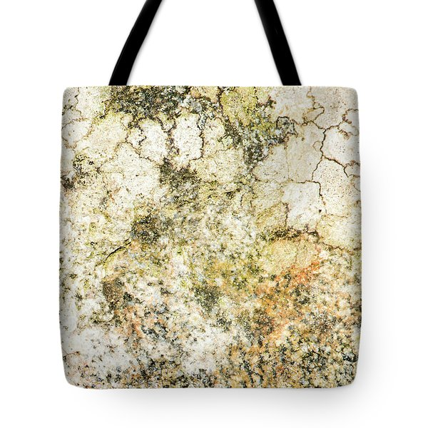 Tote Bag featuring the photograph Lichen On A Stone, Background by Torbjorn Swenelius