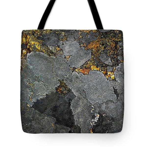 Lichen On Granite Rock Abstract Tote Bag