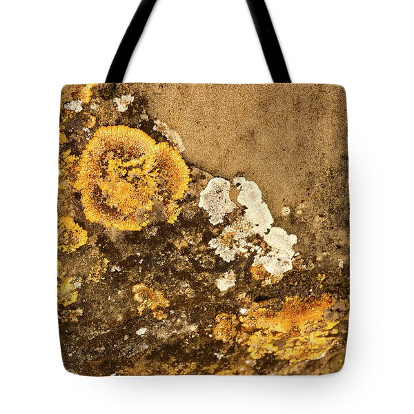 Tote Bag featuring the photograph Lichen On The Piran Walls by Stuart Litoff