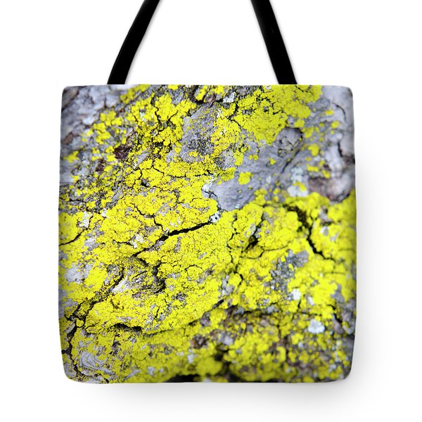 Tote Bag featuring the photograph Lichen Pattern by Christina Rollo