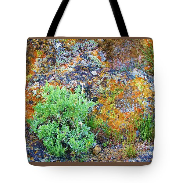 Tote Bag featuring the photograph Lichen Rainbow   by Michele Penner