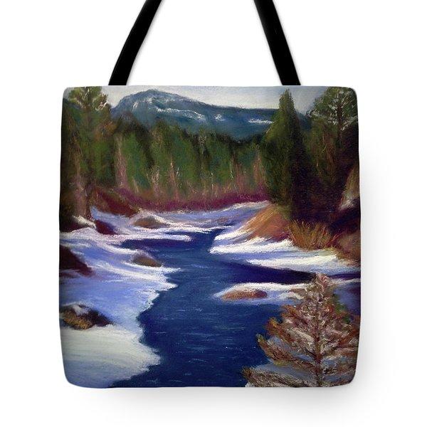 Licia's Painting Gratitude Tote Bag