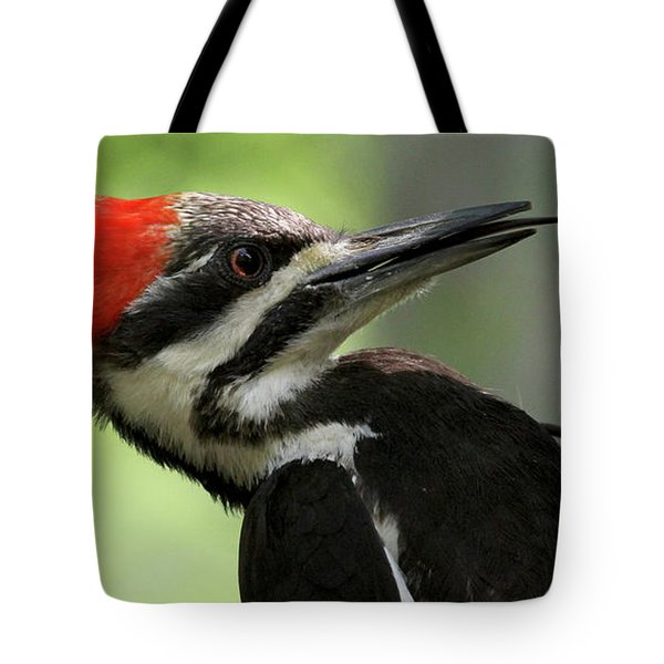 Lick It Up - Pileated Woodpecker Tote Bag